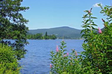 lac longemer